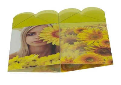 Plastic-Box-Sleeve-Sunflower-flat